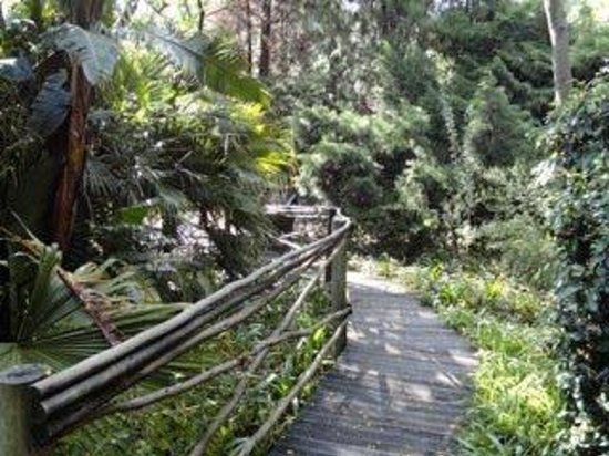 Hakunamatata Lodge: Garden Walkway
