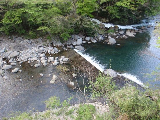 Tounosawa Quatre Saisons: View