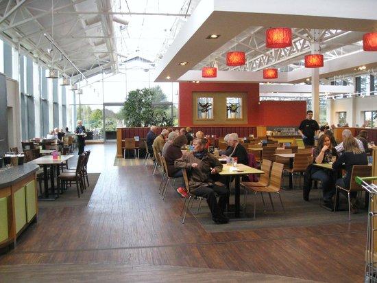 Haskins Garden Centre: Cafeteria seating area.