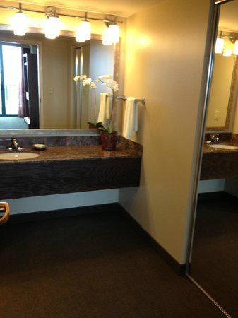 Hyatt Regency Jacksonville Riverfront: VIP Suite - Master Bathroom