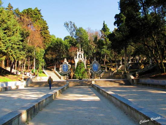 da sereia coimbraJardim da Sereia, Coimbra – Picture of Parque de