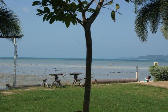 Samui Tonggad Resort: это вид во время отлива, отчетливо видно какое каменистое дно