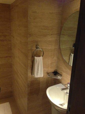 Vivanta by Taj - Panaji: Guest toilet 1 of 2