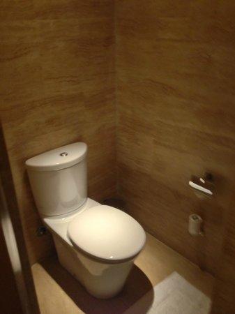 Vivanta by Taj - Panaji: Guest Toilet in the living room. 2/2