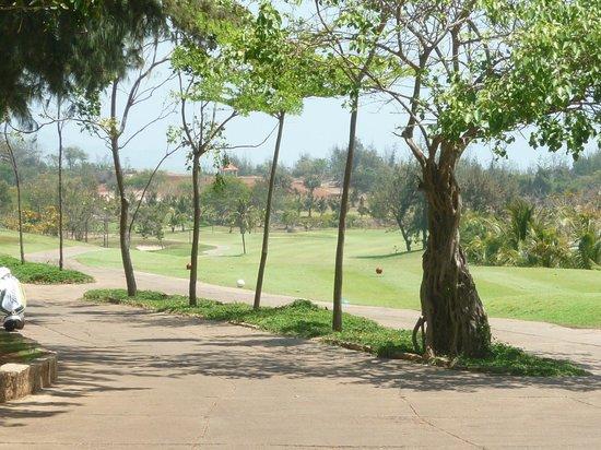 Paradise Resort Golf Club : Looks like fun