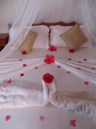 Etoile Labrine: décoration de chambre