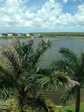 Hampton Inn & Suites Ft Lauderdale / Miramar : View out back of property