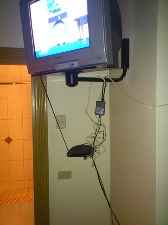 "Palm's Hotel Trinidad: The cable box and its ""nest"""
