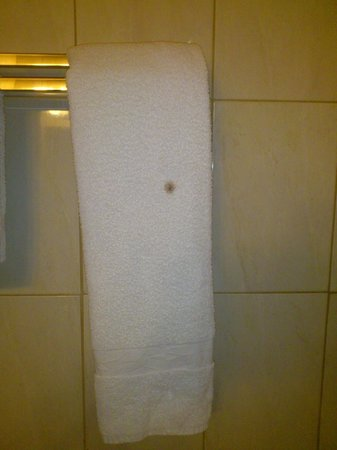 "Palm's Hotel Trinidad: What is that spot on the ""fresh"" towel?"