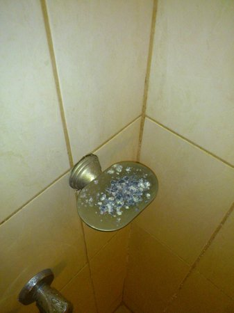 Palm's Hotel Trinidad: OMG!!!! A Positively diseased soap dish!!!