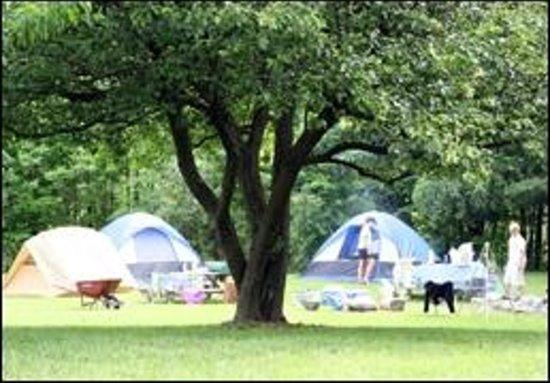 West Virginia Adventures: Campground at WVA
