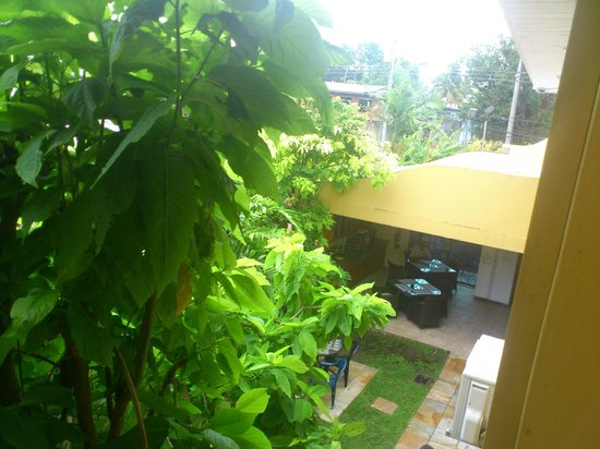 Palm's Hotel Trinidad: A partial view of the grounds.