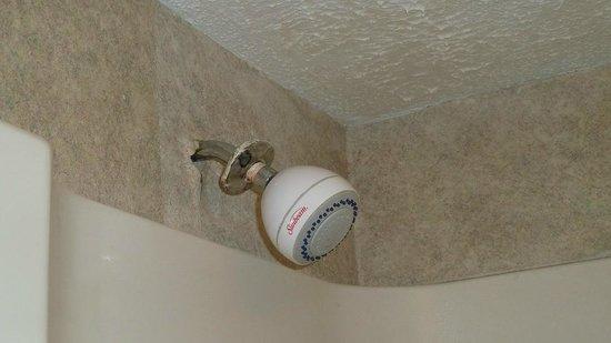 Econo Lodge: Shower head