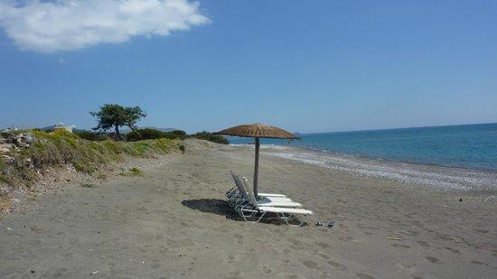 Horizon Line Villas: Beach across the road from Villas