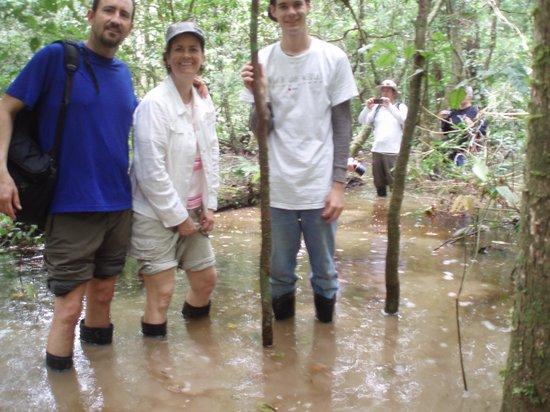 Amazon Rainforest: Treking the low parts.