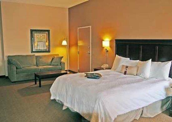 Hampton Inn Tuscaloosa -East : Hampton Inn Tuscaloosa East Hotel King Guestroom
