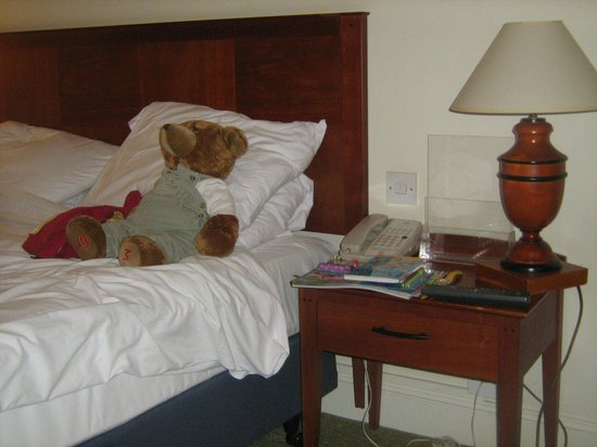 Holiday Inn Reading - South M4, Jct.11: huddles enjoyed his stay too (free of charge) lol