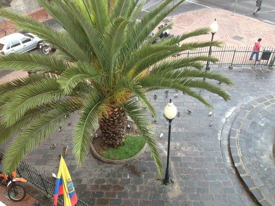Hostal Mia Leticia: outside our window
