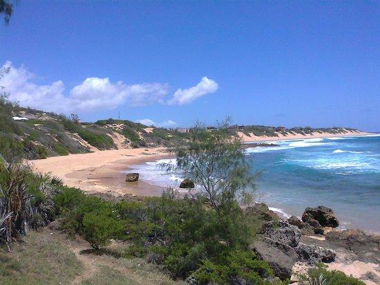 Amigo Lodge: Tofinho Beach