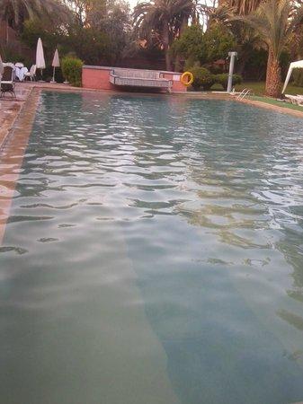Hotel Ouarzazate Le Riad: Photo de la piscine