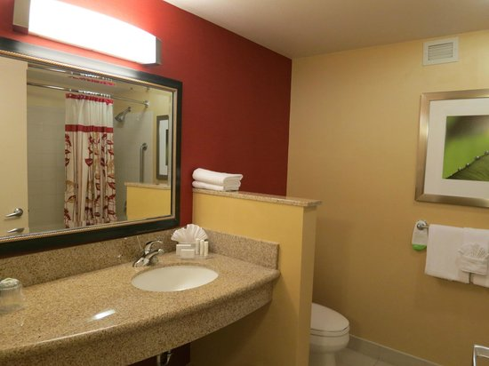 Courtyard by Marriott Austin Downtown/Convention Center: Bathroom