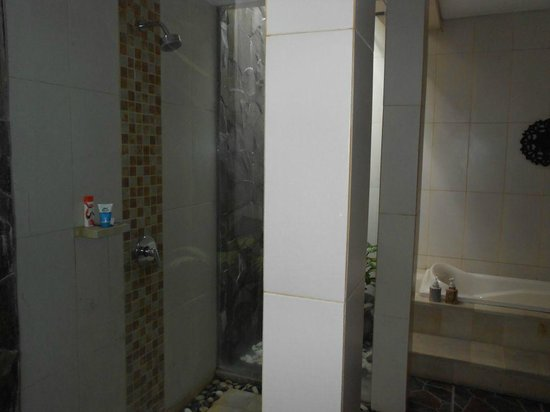 Arman Villas Seminyak : Open Shower
