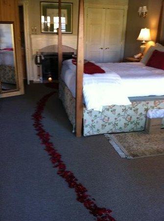 Senza Hotel: rose pedals