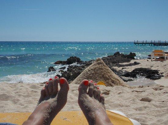 Viva Wyndham Dominicus Beach: playa