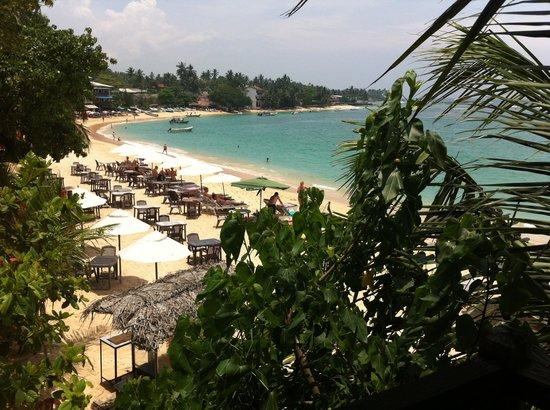 Lucky Tuna: Вид с балкона
