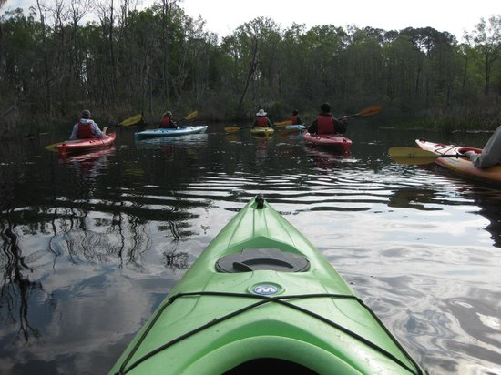 Beaufort Kayak Tours: a view of the group