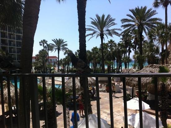 巴拿馬城海灘假日酒店照片