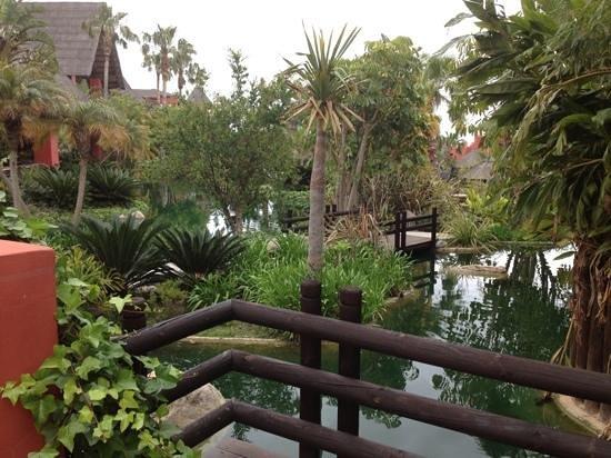 Asia Gardens Hotel & Thai Spa, a Royal Hideaway Hotel: la nature de l'hotel
