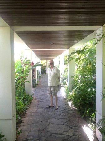 Maui Coast Hotel: To and from the restaurant or Cafe
