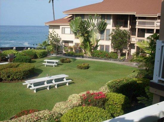 Sea Village Resort : Grounds
