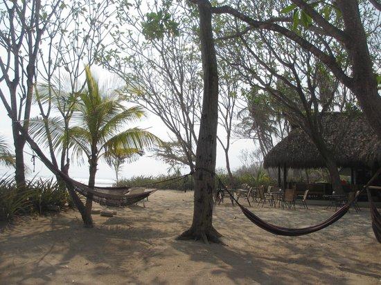 Playa Cielo: hammocks
