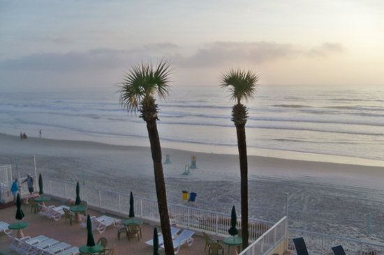 Atlantic Ocean Palm Inn : The view