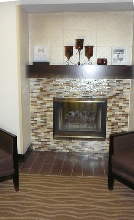 Hampton Inn & Suites Alpharetta: Lobby fireplace with glass tiles