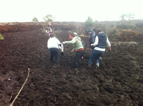 Causey Farm : stuck in the bog, so fun!