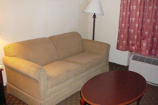 Hampton Inn & Suites Alpharetta: Sofa & coffee table
