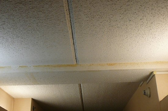 Hampton Inn & Suites Alpharetta : Water stains in hallway ceiling
