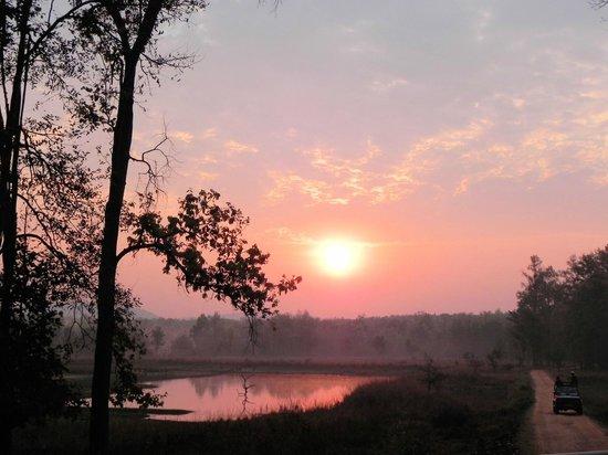 Kanha Jungle Lodge: Early safari sunrise at 6AM
