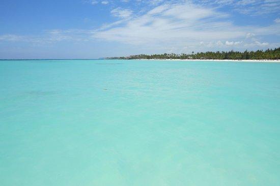 Majestic Colonial Punta Cana: capcana