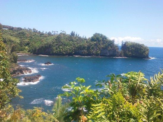 Gecko Big Island Tours, LLC: Onomea Arch
