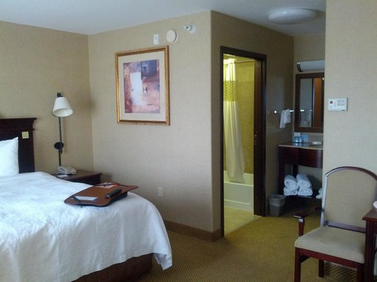 Hampton Inn & Suites Boise-Meridian: King Studio Suite