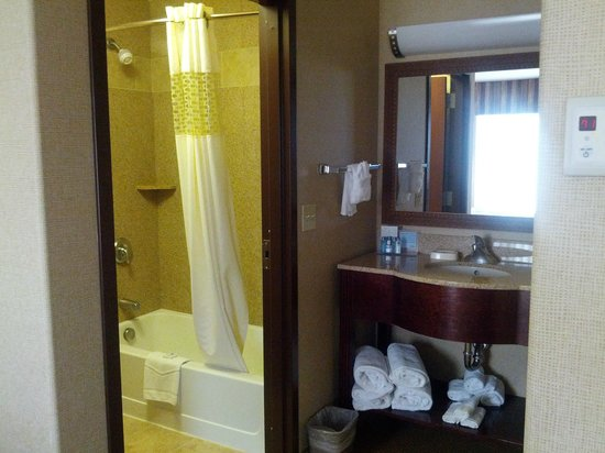 Hampton Inn & Suites Boise-Meridian : Bathroom/Vanity Area