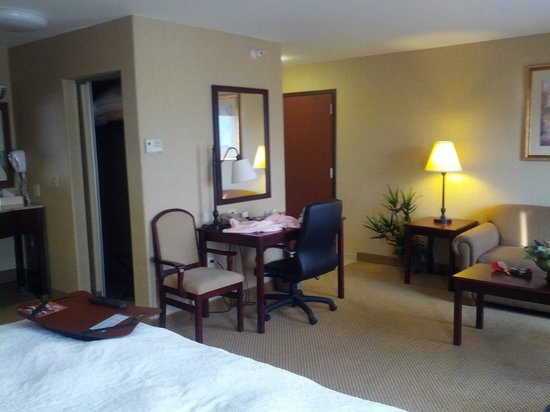 Hampton Inn & Suites Boise-Meridian : King Studio Suite