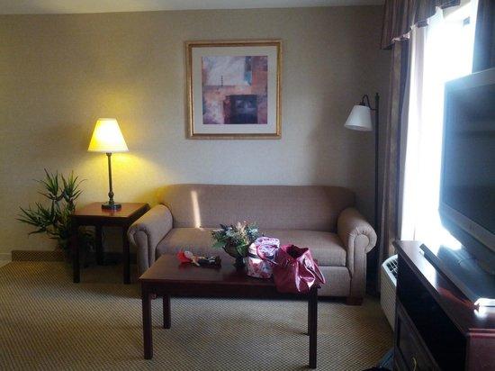 Hampton Inn & Suites Boise-Meridian: Sitting area King Studio Suite