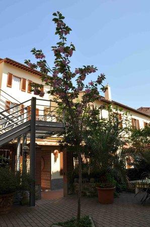 亞奇羅希酒店照片