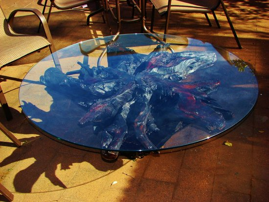 New Zealand Wood and Jade: Puriri root coffee table with toughened glass top