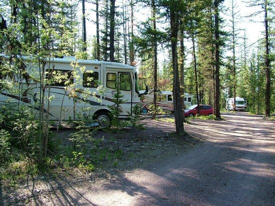 Glacier Haven RV and Campground: RV's in Glacier Haven RV